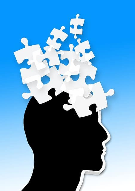 brain and puzzle pieces